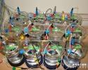 Étude de corrosion électrochimique en réacteur