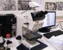 Microscope optique avec acquisition d'images par caméra