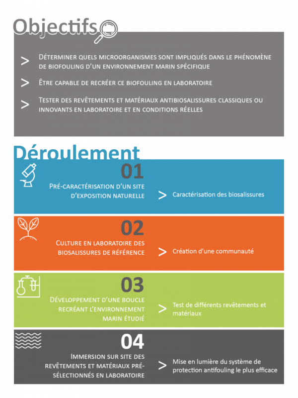 Infographie CPER