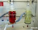 Essai d'immersion en milieu acide du titane