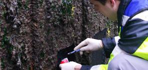 Expertise corrosion première étape avant la recherche de solution contre la corrosion